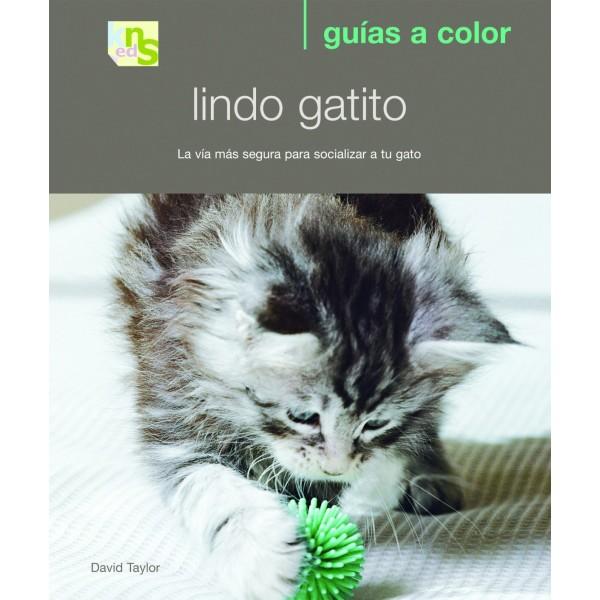 Libro KNS - Lindo Gatito