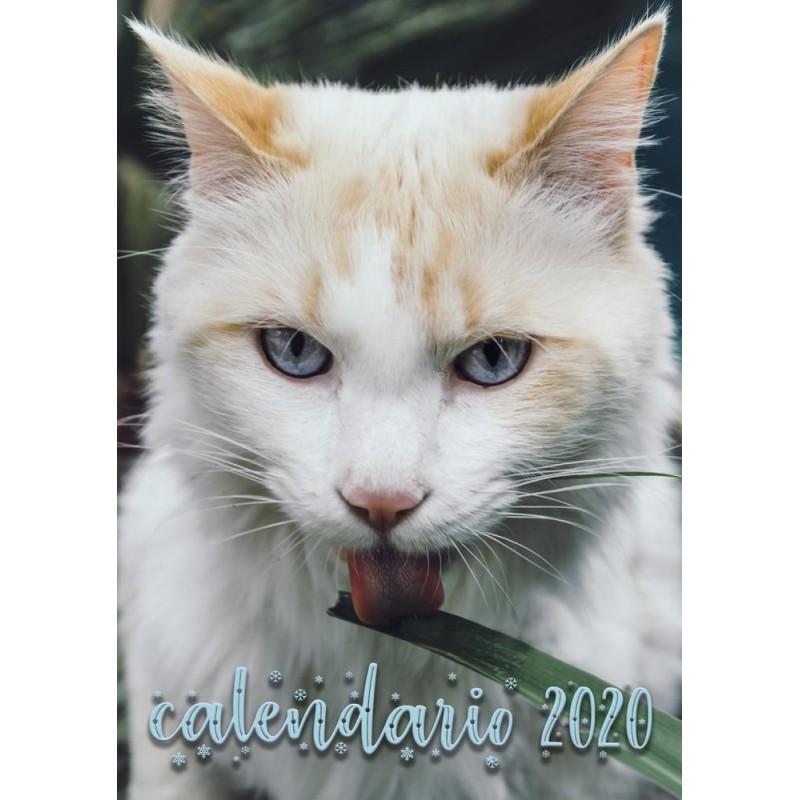 Calendario solidario...