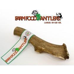 Anibio Bronchio-Vital (Bronquios) 30ml