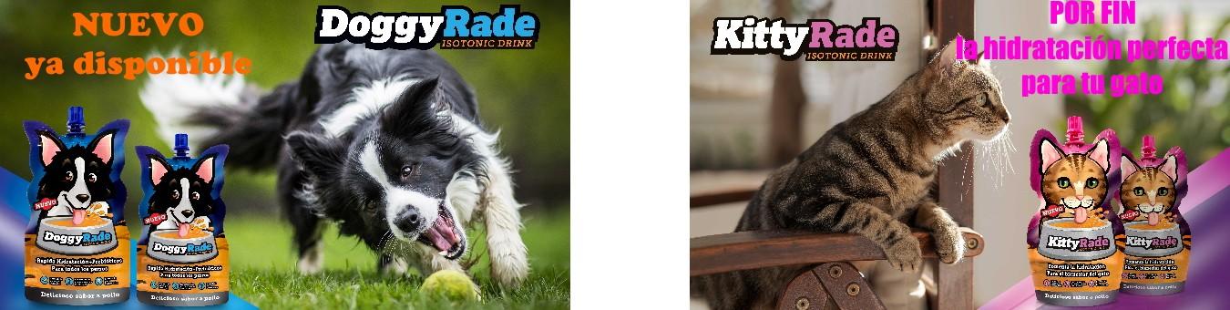 Bebida isotónica rehidratante para perros y gatos